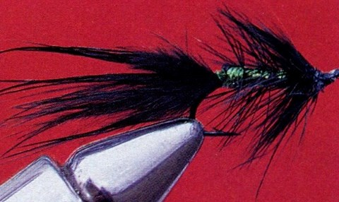 WOOLLY BUGGER (ODONATES, SANGSUE)