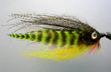 PERCH MINNOW