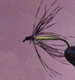 Soft-Hackle